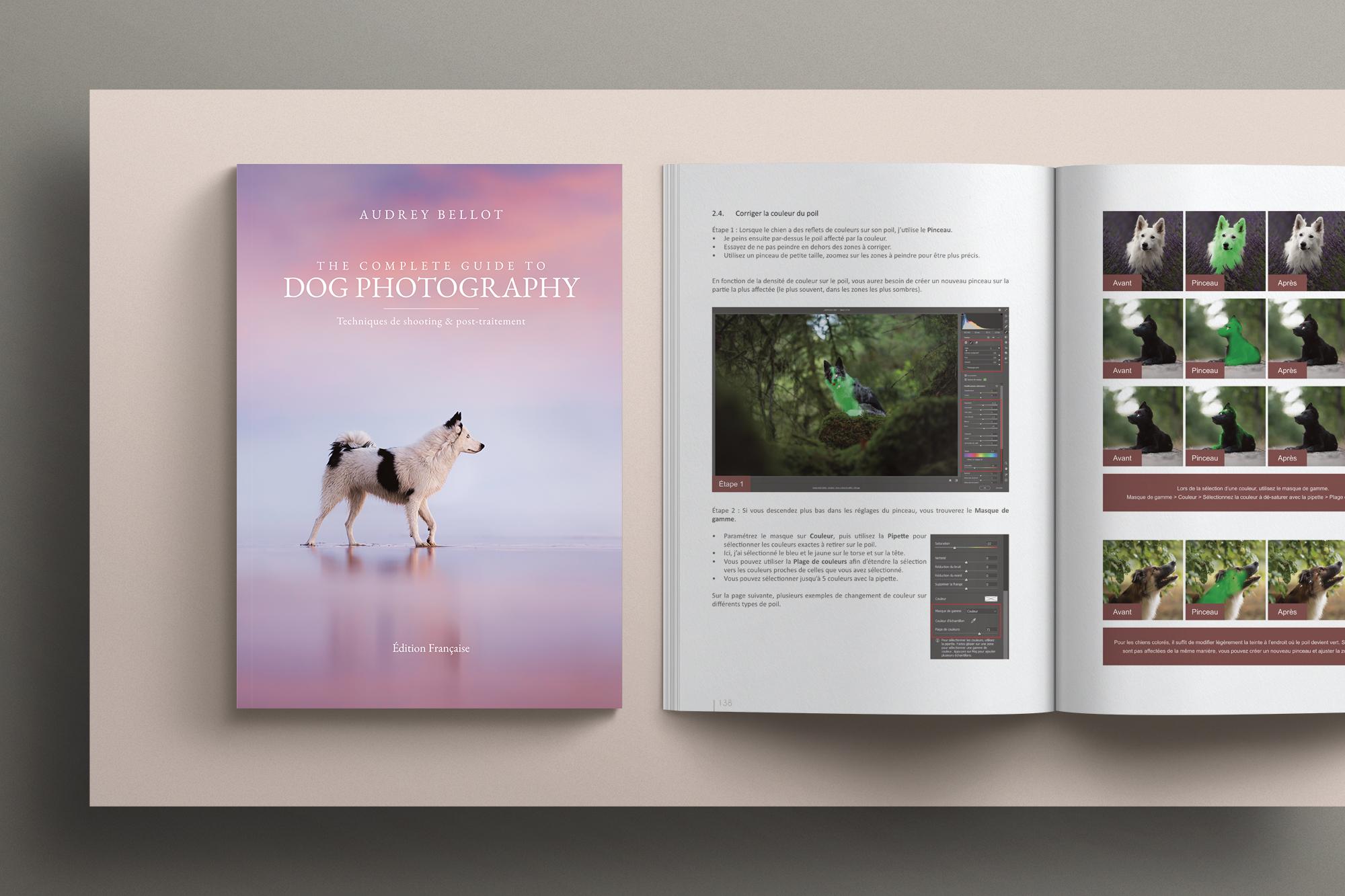 Le guide complet de la photographie canine Audrey Bellot
